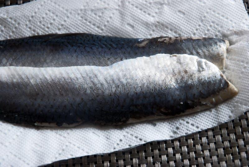 Sour herring royalty free stock photo