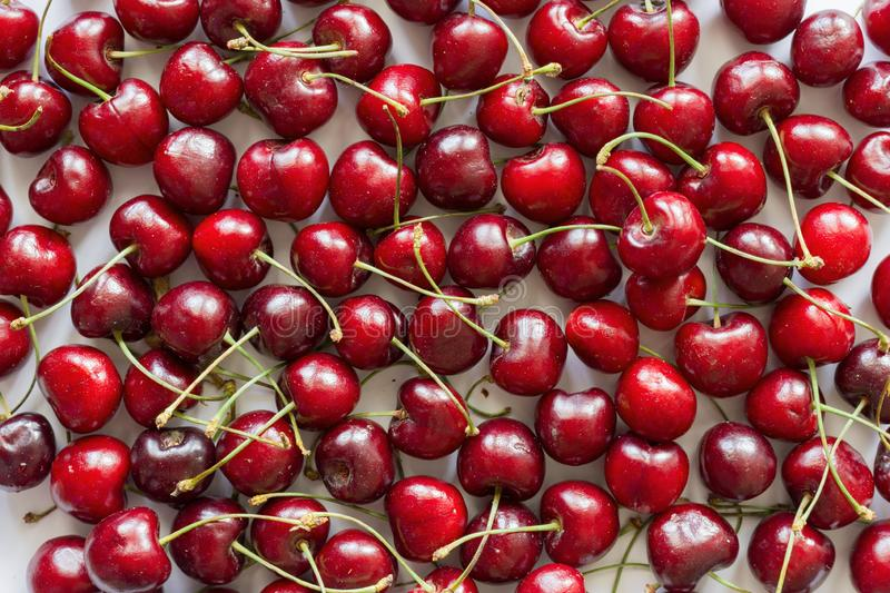 Sour red cherry pattern. royalty free stock photography