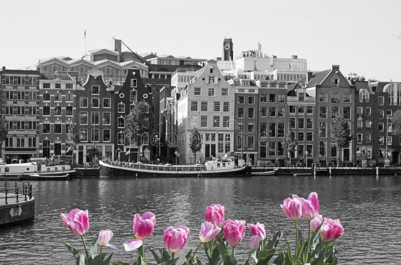 Source à Amsterdam photo libre de droits