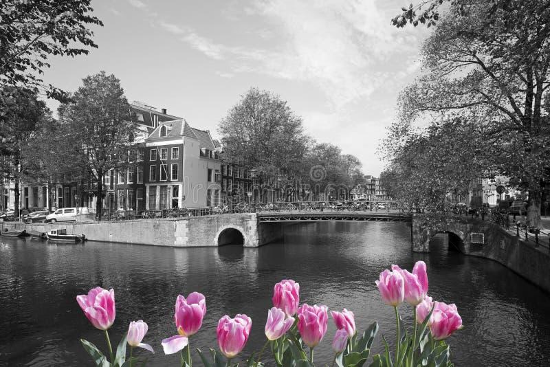 Source à Amsterdam photos stock
