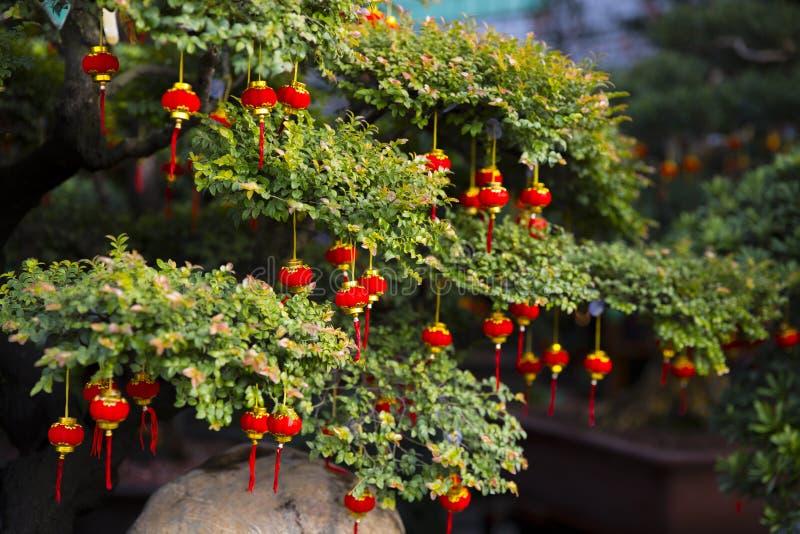 source chinoise de festival Arbre et lanternes chinoises images libres de droits