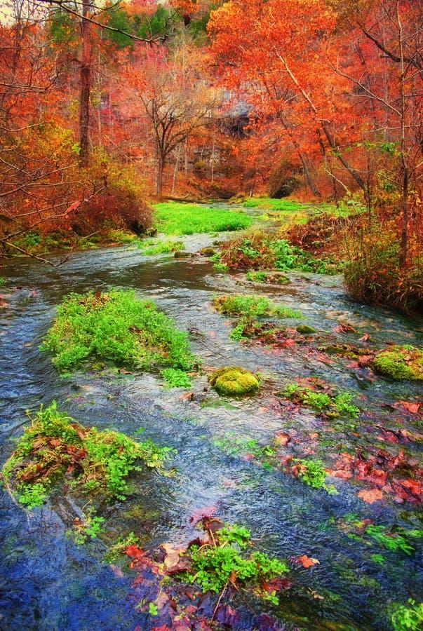 Source d'automne au Missouri image libre de droits