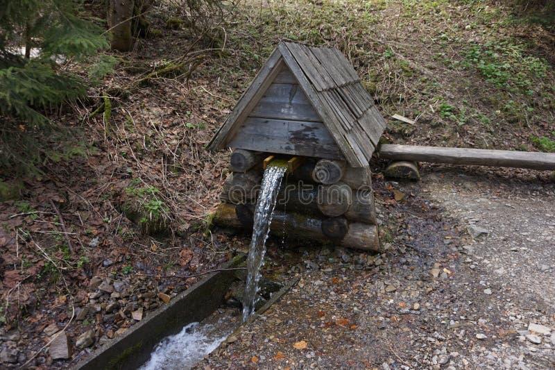 Source d'eau potable dans les montagnes Lac Synevir photos stock