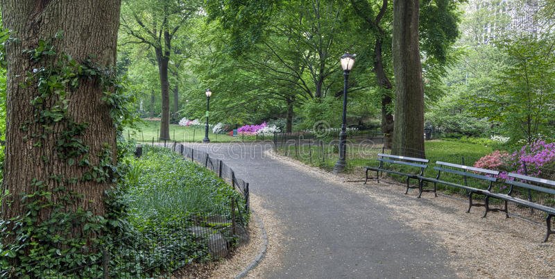 Source dans Central Park photo stock