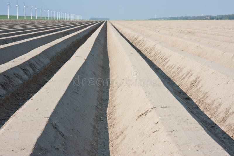Source de attente de terres cultivables nues images libres de droits