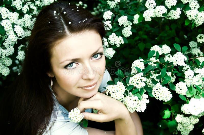 source de floraison de fleur photo stock