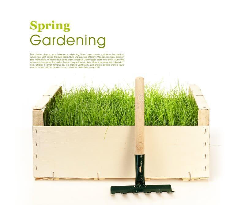 source de jardinage photos stock