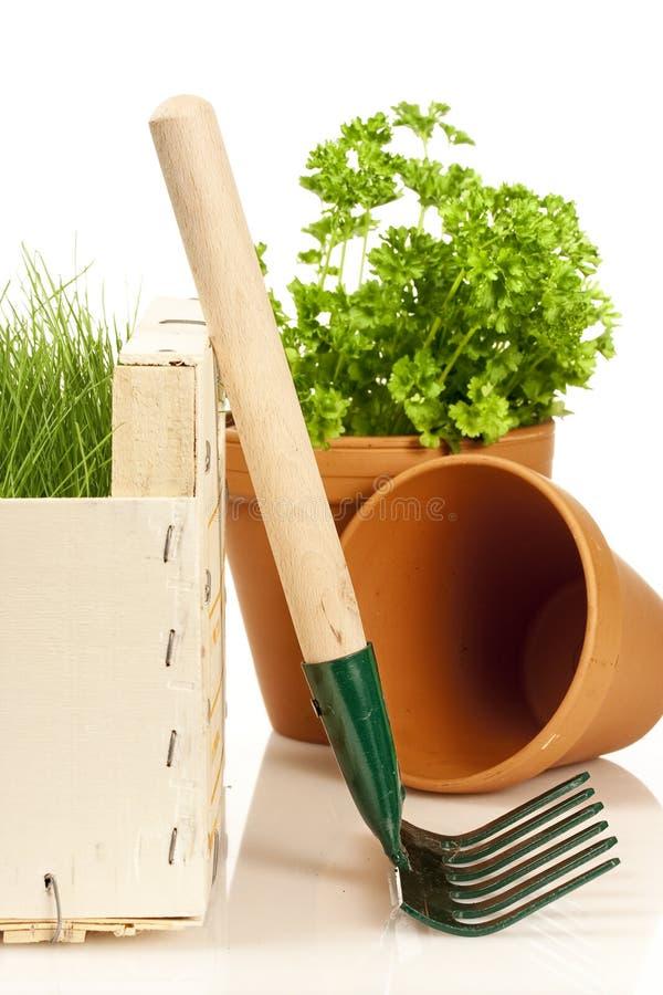 source de jardinage photographie stock libre de droits