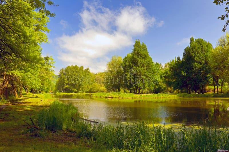 source de lac photographie stock