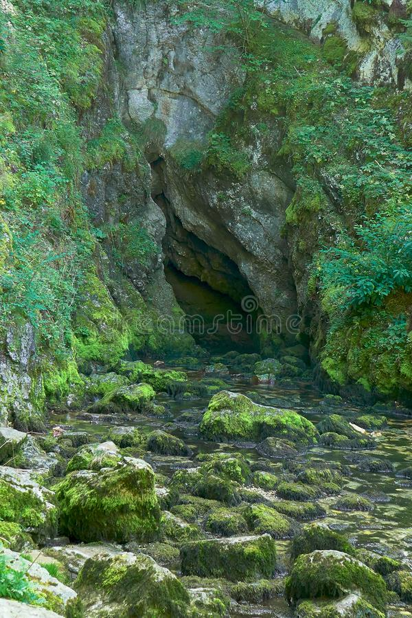 Source du Doubs Mouthe Franche Comté France with Green Plants. On A Sunny Day royalty free stock photo