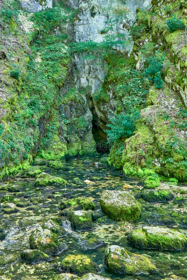Source du Doubs Mouthe Franche Comté France with Green Plants. On A Sunny Day royalty free stock photography