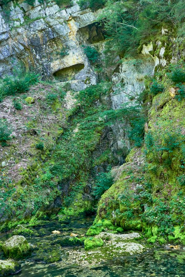 Source du Doubs Mouthe Franche Comté France with Green Plants. On A Sunny Day stock photography
