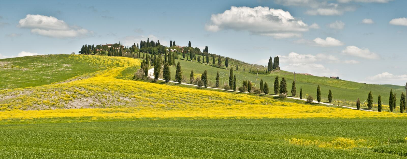 Source en Toscane photo stock