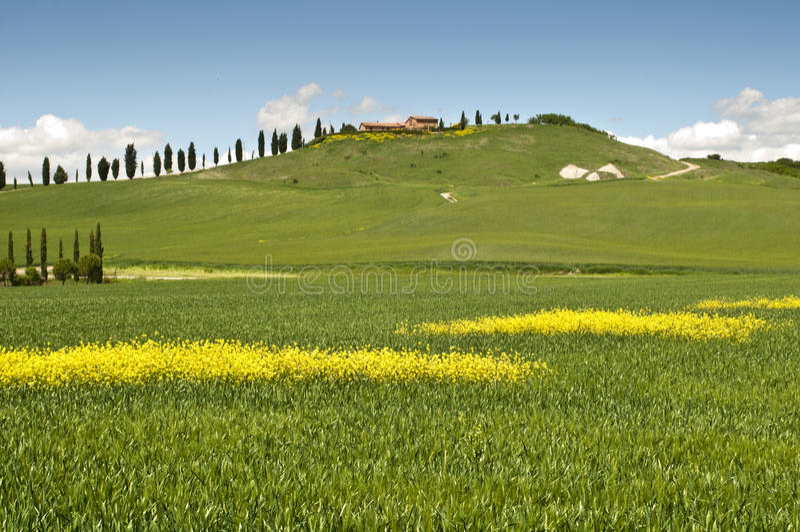 Source en Toscane photographie stock