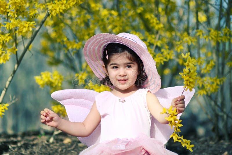 Source fairy3 photo stock