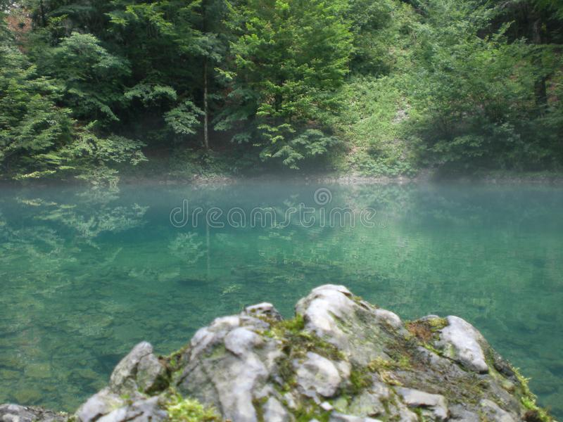 Source of the mountain river. In the forest royalty free stock photos