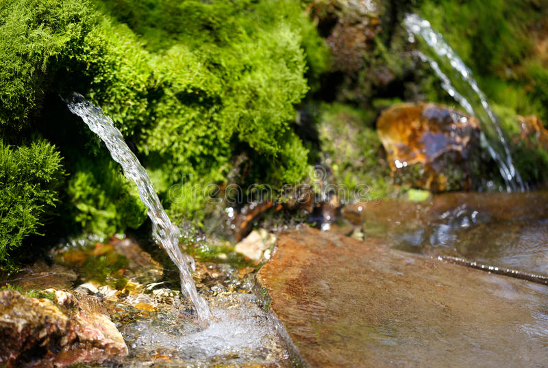 Source of spring water. In the forest stock photos