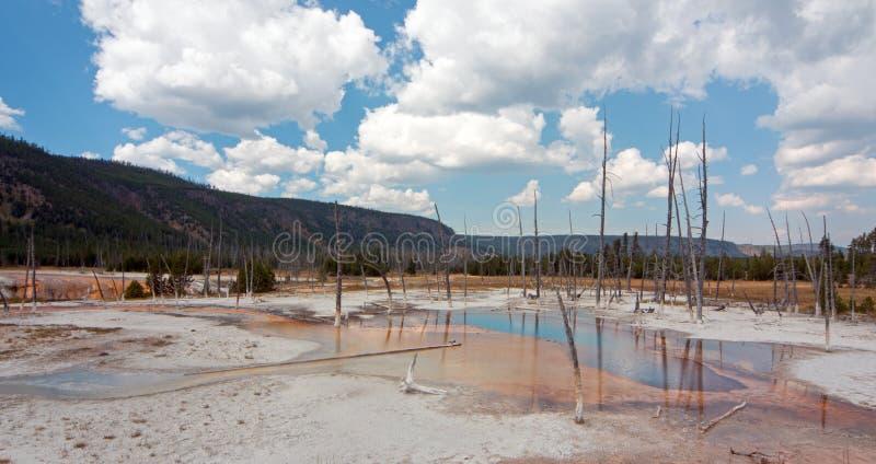 Source thermale de piscine opalescente dans le bassin noir de geyser de sable en parc national de Yellowstone au Wyoming Etats-Un photos libres de droits