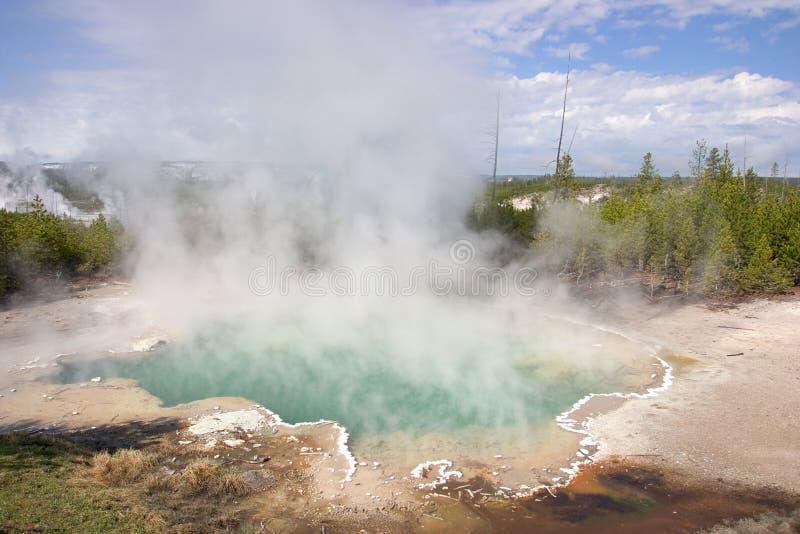 Source thermale en stationnement national de Yellowstne photos libres de droits