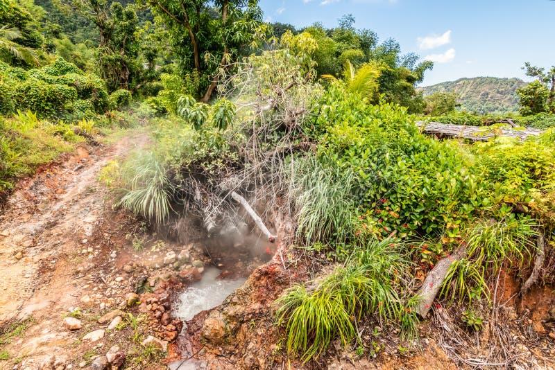 Source thermale naturelle sur l'île de la Dominique photographie stock libre de droits