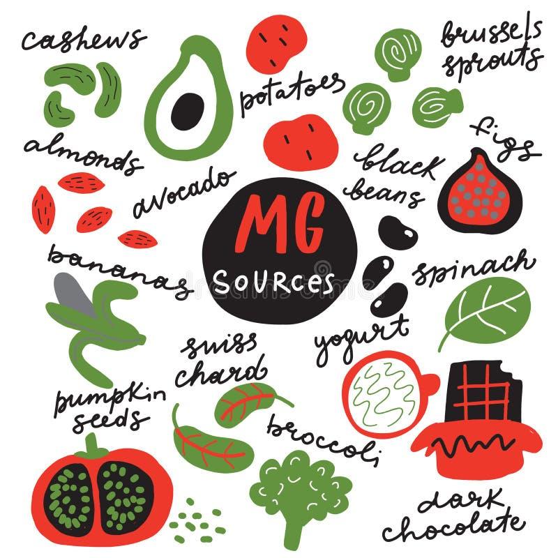 Sources de magnésium Illustration tirée par la main drôle des nourritures riches en vecteur de magnésium illustration stock