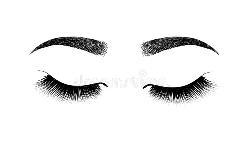 sourcil parfaitement formé maquillage permanent et tatouer Cosmétique pour des sourcils Extension de cil Un beau maquillage profo illustration de vecteur