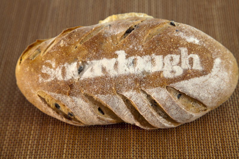 Sourdough. A big loaf of sourdough bread royalty free stock images
