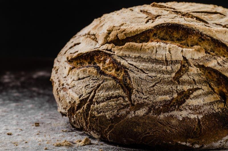 Sourdough för hemlagat bröd arkivfoto