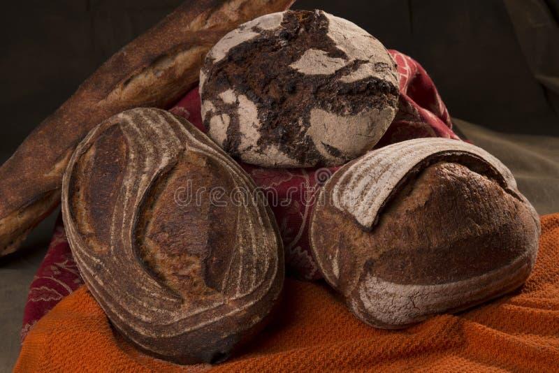 Sourdough, Rye и багет хлеба ремесленника стоковые фотографии rf