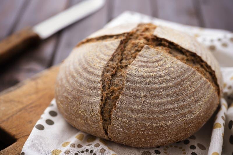 Sourdough rye bread. Fresh, homemade, sourdough rye bread stock image