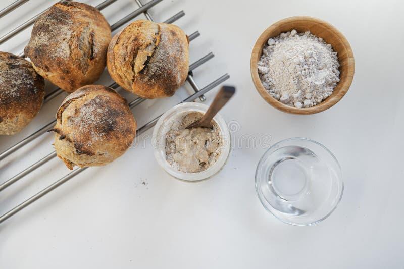 Sourdough starter yeast ingredients royalty free stock photo