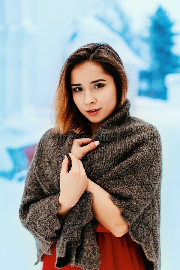 Souriante jolie jeune femme dans un magnifique châle posant dans une forêt d'hiver ou dans un parc images libres de droits