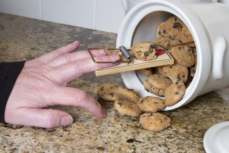 Souricière à clapet dans une boîte à biscuits photographie stock libre de droits
