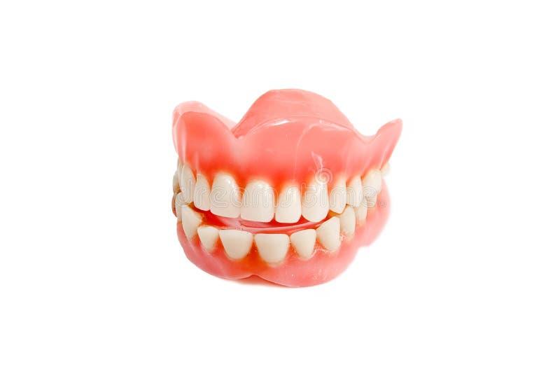 Sourire de mâchoire des dents en plastique images stock