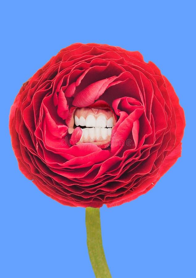 Sourire et éclat comme un ressort Fleur alternative illustration stock