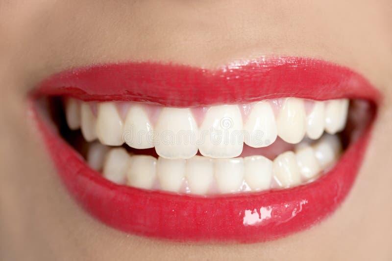 Sourire parfait de dents de beau femme image libre de droits