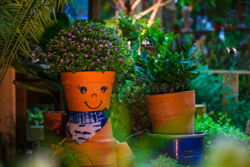 Sourire Pot De Fleur Drôle Et Mignon Dans Un Jardin Idée à ...