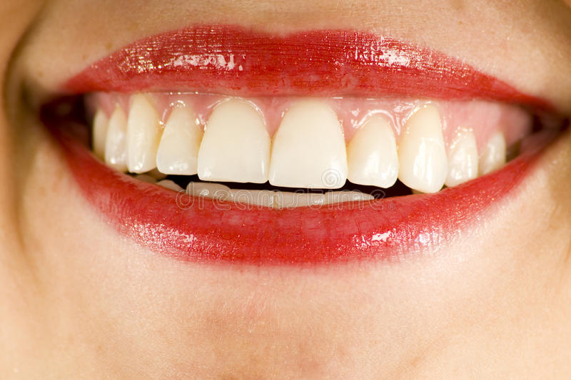 Sourire rouge de rouge à lievres photo stock