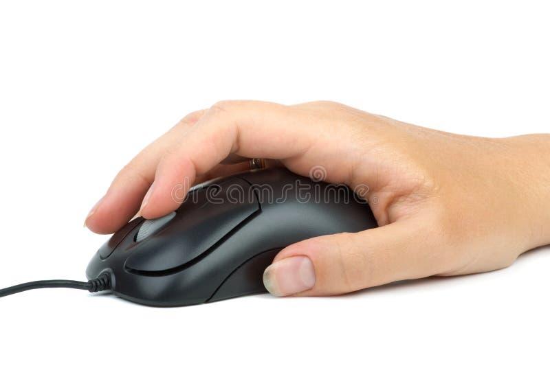 Souris d'ordinateur disponible. images libres de droits