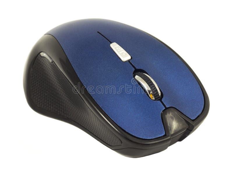 Souris noire et bleue d'ordinateur d'isolement sur un fond blanc images libres de droits