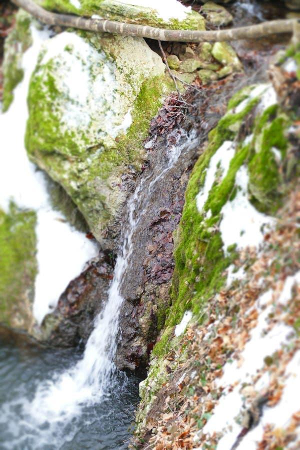 Sourse da cachoeira imagem de stock royalty free