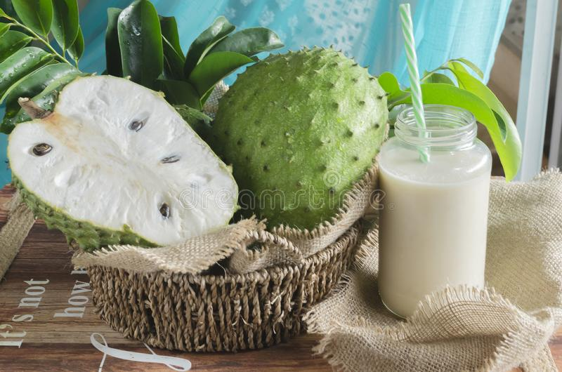 Soursop also graviola, guyabano is the fruit of Annona muricata. A broadleaf, flowering, evergreen tree royalty free stock photo