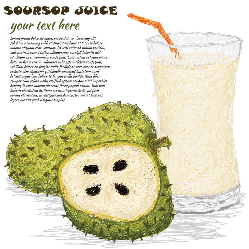 Download Soursop fruit juice stock vector. Illustration of annona - 29536433