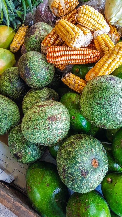 Soursop jamaicano da montanha do fruto imagens de stock