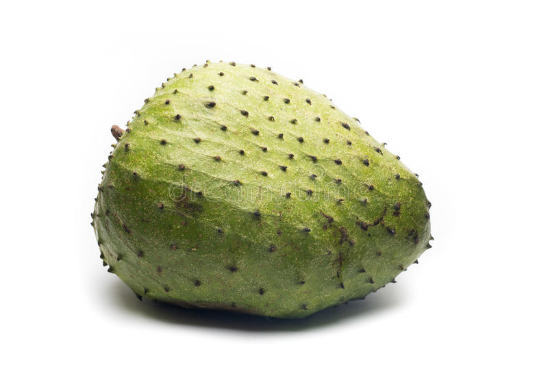 Soursop, Prickly Custard Apple. Annona muricata L. royalty free stock photo