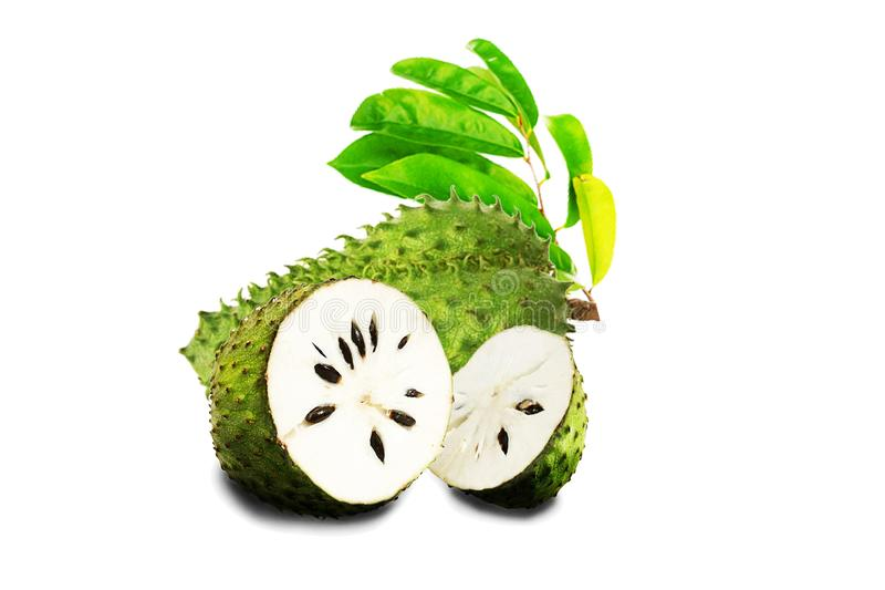 Soursop or Prickly Custard Apple Isolate on white background. royalty free stock images