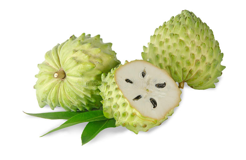 Download Soursop section stock photo. Image of healthy, half, white - 23400014