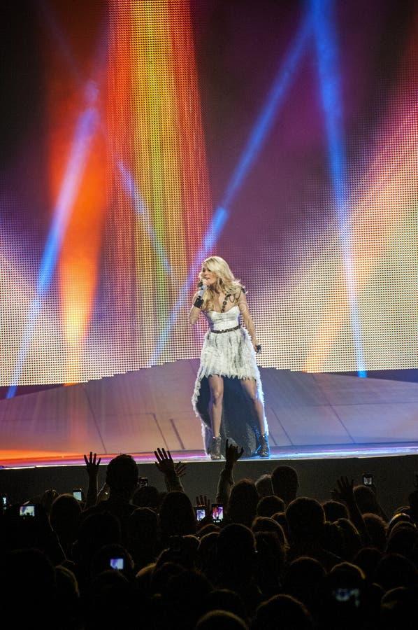 Sous-bois de Carrie de concert image libre de droits