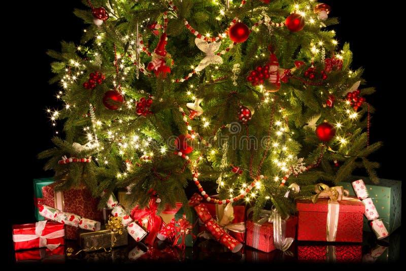 Sous l'arbre de Noël image libre de droits