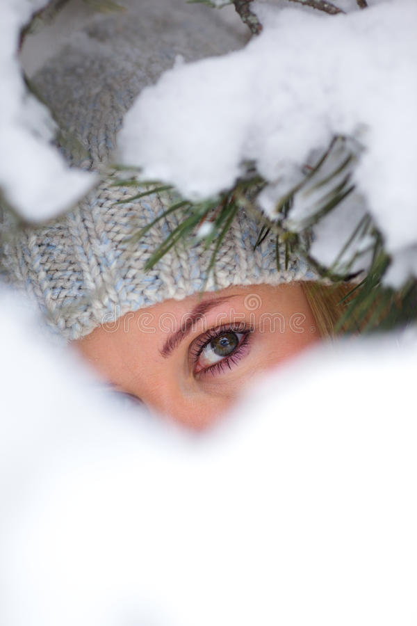 Sous l'arbre de pin de neige images libres de droits